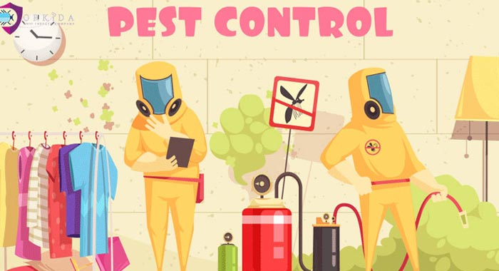 How Does Pest Control Services Help You with Such Problems