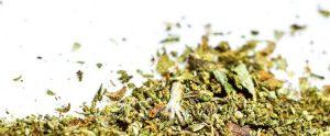 how long are marijuana edibles good for