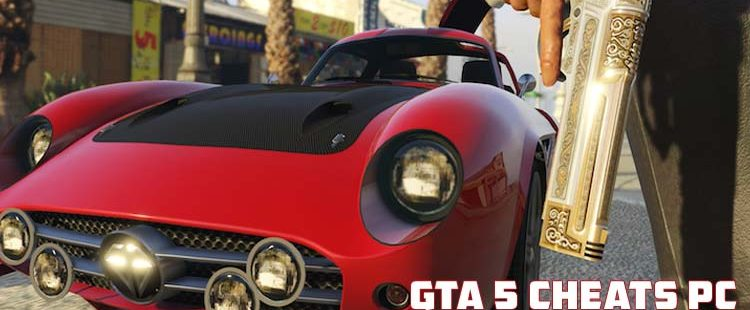 How to Enter Gta 5 Cheats Pc?
