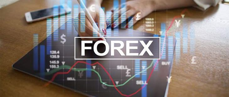 How you can Create the Forex Trading Robot?