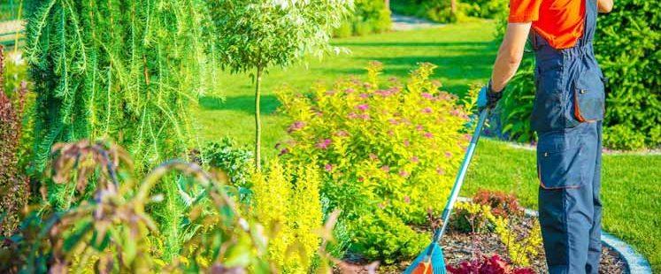 How Do I Keep My Garden Clean?