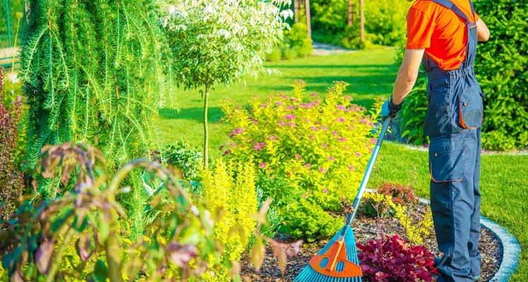 How Do I Keep My Garden Clean