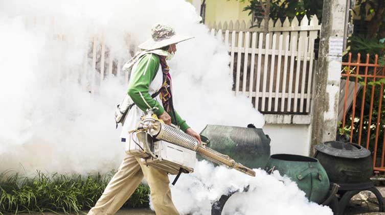 Homemade Ways To Get Rid Of Mosquitoes