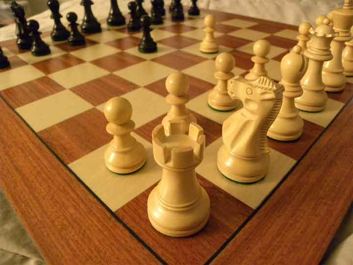 Review of King Power in Chess by Edgar Mednis