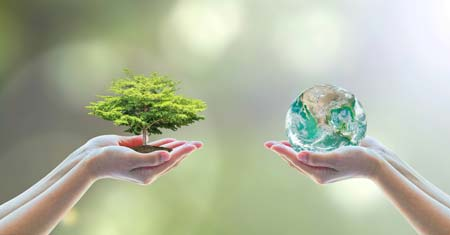 An Individual Approach to Energy Conservation and Environmental Awareness