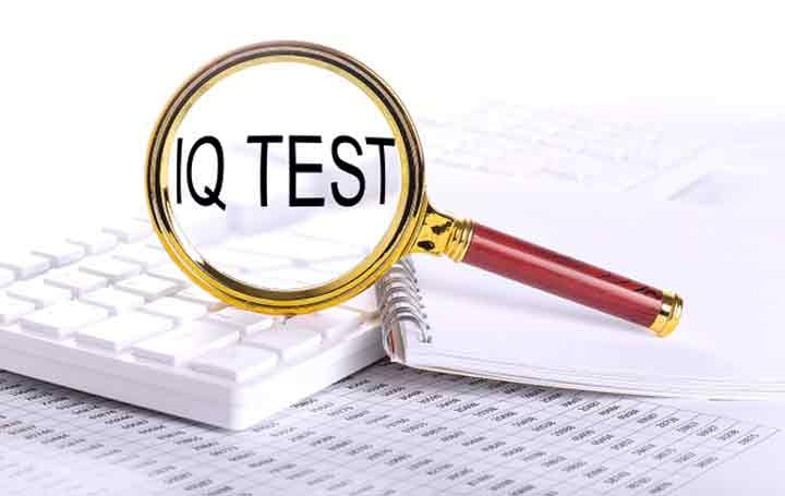 Capacity in IQ Testing