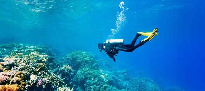 Are Cruises Able To Offer Scuba Diving To Their Passengers?